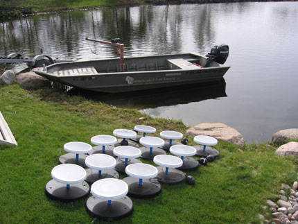 Two private 2 5 acre ponds wisconsin lake pond for Pond fish stocking calculator