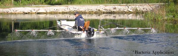 aquatic treatment