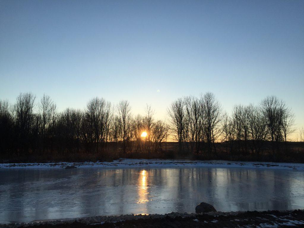 ice, pond